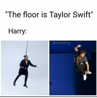 """Life, Memes, and Taylor Swift: """"The floor is Taylor Swift""""  Harry:  @harryslit/ig """"the floor"""" memes are my life"""