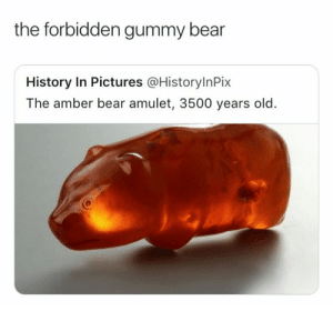 Bear, History, and Pictures: the forbidden gummy bear  History In Pictures @HistorylnPix  The amber bear amulet, 3500 years old. Forbidden Gummy Bear