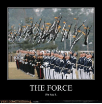 very demotivational: THE FORCE  We haz it.  VERY DEMOTIVATIONAL.com