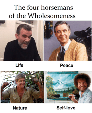 15 Wholesome Memes That'll Warm Up Your Ice-Cold Heart | Memes ...: The four horsemans  of the Wholesomeness  Life  Peace  Nature  Self-love 15 Wholesome Memes That'll Warm Up Your Ice-Cold Heart | Memes ...