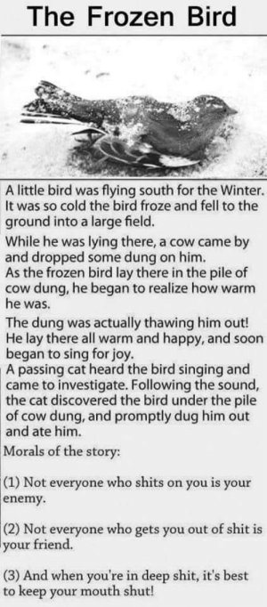 Lesson.: The Frozen Bird  A little bird was flying south for the Winter.  It was so cold the bird froze and fell to the  ground into a large field.  While he was lying there, a cow came by  and dropped some dung on him.  As the frozen bird lay there in the pile of  cow dung, he began to realize how warm  he was.  The dung was actually thawing him out!  He lay there all warm and happy, and soon  began to sing for joy  passing cat heard the bird singing and  came to investigate. Following the sound,  A  the  cat discovered the bird under the pile  of cow dung, and promptly dug him out  and ate him.  Morals of the story:  (1) Not everyone who shits on you is your  enemy.  (2) Not everyone who gets you out of shit is  your friend.  (3) And when you're in deep shit, it's best  to keep your mouth shut! Lesson.