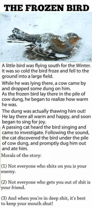 The frozen bird: THE FROZEN BIRD  A little bird was flying south for the Winter.  It was so cold the bird froze and fell to the  ground into a large field.  While he was lying there, a cow came by  and dropped some dung on him  As the frozen bird lay there in the pile of  cow dung, he began to realize how warm  he was.  The dung was actually thawing him out!  He lay there all warm and happy, and soon  began to sing for joy.  A passing cat heard the bird singing and  came to investigate. Following the sound,  the cat discovered the bird under the pile  of cow dung, and promptly dug him out  and ate him.  Morals of the story:  (1) Not everyone who shits on you is your  enemy  (2) Not everyone who gets you out of shit is  your  friend.  (3) And when you're in deep shit, it's best  to keep your mouth shut! The frozen bird