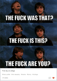Ron Weasley Meme: THE FUCK WAS THAT?  THE FUCK IS THIS?  THE FUCK ARE YOU?  First day at college  #harrypotter #ron weasley #meme #funny #college  31 notes