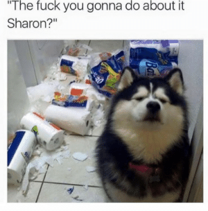 Sharon: The fuck you gonna do about it  Sharon?""