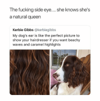 wavy beach hair lmao: The fucking side eye.... she knows she's  a natural queen  Kerbie Gibbs @kerbiegibbs  My dog's ear is like the perfect picture to  show your hairdresser if you want beachy  waves and caramel highlights wavy beach hair lmao