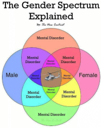 Centrist: The Gender Spectrum  Explained  By: The mew Centrist  Mental Disorder  Mental  Mental  DisorderDisorder  Male  Mental  isorder  Menta Female  Disorder  Mental  Mental Disorder/ Mental  Disorder  Disorder  Mental Disorder