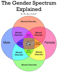 F-San: The Gender Spectrum  Explained  By: The new Certist  Mental Disorder  Mental  Mental  Disorder  Mental  Disorder  Disorder  Male  Mental  Female  Mental  Disorder  Disorder  Mental  Mental Disorder  Mental  Disorder  Disorder  Mental Disorder F-San