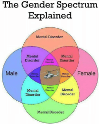 Memes, Help, and 🤖: The Gender Spectrum  Explained  Mental Disorder  Mental  Mental  Disorder Mental Disorder  Disorder  Male  Mental  isorder  Mta Female  Disorder  Mental  Mental Disorder Mental  Disorder  Disorder  Mental Disorder This chart should help you all... 😎