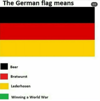 My entire food intake today has been pizza: The German flag means  2/2  Beer  Bratwurst  Lederhosen  Winning a World War My entire food intake today has been pizza