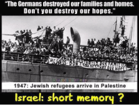 """Memes, Israel, and Germanic: """"The Germans destroyed our families andhomes.  Don't you destroy our hopes.""""  1947: Jewish refugees arrive in Palestine  Israel: short memory Israelis didn't show the whole of their banner: """"... Don't you destroy our hopes as we gonna destroy your homes in coming years!"""""""
