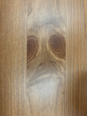The ghost of an emu haunting me from a wood table https://t.co/SbgmL8mp9W: The ghost of an emu haunting me from a wood table https://t.co/SbgmL8mp9W