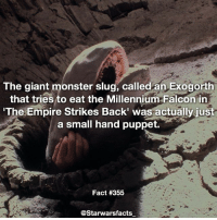 You can see the persons hand in the background of this picture starwarsfacts: The giant monster slug, called an Exogorth  that tries to eat the Millennium Falcon in  The Empire Strikes Back' was actually just  a small hand puppet.  Fact #355  @Starwarsfacts You can see the persons hand in the background of this picture starwarsfacts