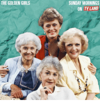 Which of TheGoldenGirls is most like you? Watch every Sunday morning on TVLand!: THE GOLDEN GIRLS  SUNDAY MORNINGS  ON TV LAND Which of TheGoldenGirls is most like you? Watch every Sunday morning on TVLand!
