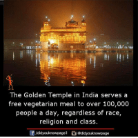 Memes, Race, and Religion: The Golden Temple in India serves a  free vegetarian meal to over 100,000  people a day, regardless o  race,  religion and class.  /didyouknowpagel  @didyouknowpage