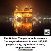 Anaconda, Facts, and Memes: The Golden Temple in India serves a  free vegetarian meal to over 100,000  people a day, regardless of race,  religion and class.  f OpogLife Facts Inc
