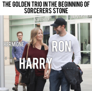 Hermione, Boy, and Harry: THE GOLDEN TRIO IN THE BEGINNING OF  SORCERERS STONE  BOY OFC  CIFT SHOP  RON  HARRY  HERMIONE Leviosaaaa