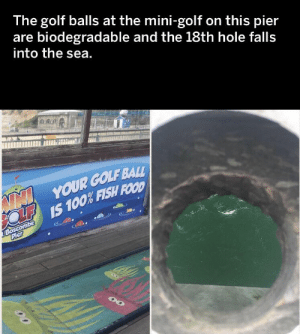 https://t.co/diq96WVAqx: The golf balls at the mini-golf  are biodegradable and the 18th hole falls  into the sea.  on this pier  NN YOUR GOLF BALL  OLF IS 100% FISH FOOD  JBoscombe  Pier https://t.co/diq96WVAqx