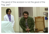 Memes, Good, and Scorpion: The good of the scorpion is not the good of the