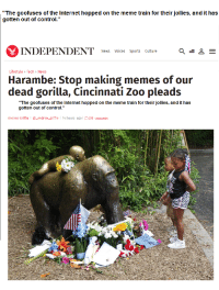 "Me irl: ""The goofuses of the Internet hopped on the meme train for their jollies, and it has  gotten out of control.""  INDEPENDENT  News Voices Sports Culture  E  Lifestyle Tech News  Harambe: Stop making memes of our  dead gorilla, Cincinnati Zoo pleads  ""The goofuses of the Internet hopped on the meme train for their jollies, and it has  gotten out of control.""  Andrew Griffin l andrew griffin  l 14 hours ago l 108 comments Me irl"
