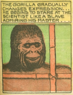That smile though: THE GORILLA GRADUALLY  HE BEGINS TO STARE AT TH  SCIENTIST LIKEA SLAVE  ADMIRING HIS MASTER That smile though