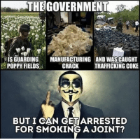 Memes, Smoking, and Cracked: THE GOVERNMENT  IS GUARDING  MANUFACTURING AND WASCAUGHT  POPPY FIELDS  CRACK  TRAFFICKING COKE  BUT I CAN GETARRESTED  FOR SMOKING A JOINT?