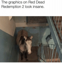 Game, Dank Memes, and Red Dead Redemption: The graphics on Red Dead  Redemption 2 look insane. I wish i could play this game with @therecoveringproblemchild