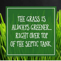 septic tank: THE GRASS IS  ALWAYS GREENER...  RIGHT OVER TOP  OF THE SEPTIC TANK