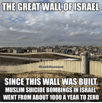Memes, 🤖, and Great Wall: THE GREAT WALL OF ISRAEL  Silenceisconsentonet  SINCE THIS WALLWASBUILT  MUSLIMSUICIDEBOMBINGSIN ISRAEL  WENT FROM ABOUT 1000 A YEAR TO ZERO