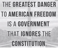 Ignorant, Memes, and American: THE GREATEST DANGER  TO AMERICAN FREEDOM  IS A GOVERNMENT  THAT IGNORES THE  CONSTITUTION Don't forget that