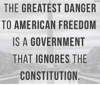 Ignorant, Memes, and American: THE GREATEST DANGER  TO AMERICAN FREEDOM  IS A GOVERNMENT  THAT IGNORES THE  CONSTITUTION  RM  GD  DTE  AEE  DRMET  Sl  FNRU  TF  ROT  SNR  ACE  110 S  ERGT  TN  RE  MAA0  G  EASHC  EAST  H0  TT Don't let this happen