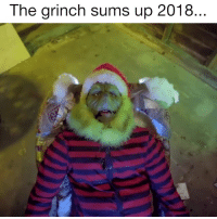 The Grinch: The grinch sums up 2018