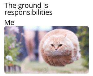 ?: The ground is  responsibilities  Ме ?