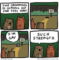 We need more holidays like this 😂 (@hilarioushumanitarian 👌🏽): THE GROUNDHOG  IS COMING OUT  FOR THIS YEAR!  GROUND  HOG  DE N  I'm  SUCH  GAY  GROUND  STRENGTH  HOG  DE N  http //amateurhourcomics com  Stewart matzek We need more holidays like this 😂 (@hilarioushumanitarian 👌🏽)