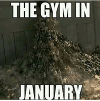 Brace yourself the new years resolution gym members are coming!: THE GYM IN  JANUARY Brace yourself the new years resolution gym members are coming!