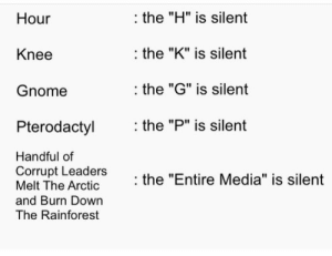 "ViDeO GaMeS cAuSe ViOleNcE: the ""H"" is silent  Hour  the ""K"" is silent  Knee  the ""G"" is silent  Gnome  the ""P"" is silent  Pterodactyl  Handful of  Corrupt Leaders  Melt The Arctic  the ""Entire Media"" is silent  and Burn Down  The Rainforest ViDeO GaMeS cAuSe ViOleNcE"