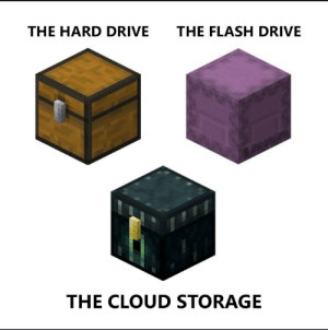 Minecraft storage system be like: THE HARD DRIVE  THE FLASH DRIVE  Babble Bam  THE CLOUD STORAGE Minecraft storage system be like