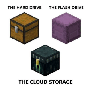 *Laughs in Barrel*: THE HARD DRIVE  THE FLASH DRIVE  THE CLOUD STORAGE *Laughs in Barrel*