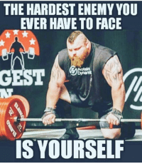 Fucking, Funny, and Love: THE HARDEST ENEMY YOU  EVER HAVE TO FACE  GEST  IS YOURSELF .. 💥💥💥💥💥💥💥 . .. Mind over fucking matter.. 💥💥💥💥💥💥💥 FOLLOW US . ⬇️⬇️⬇️⬇️⬇️⬇️⬇️⬇️⬇️⬇️⬇️⬇️ 🔥🔥@bodybuilding_humour 🔥🔥 ⬆️⬆️⬆️⬆️⬆️⬆️⬆️⬆️⬆️⬆️⬆️⬆️ ... workout bodybuilding gymmemes crossfit strong motivation instalike powerlifting Quote quotes gymhumour deadlift squat bench love gymhumour funny joke legday instagood fitspo motivation girlswholift fitchick mma conormcgregor