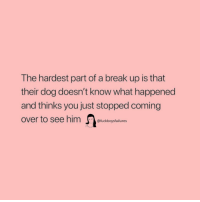 Break, Girl Memes, and Break Up: The hardest part of a break up is that  their dog doesn't know what happened  and thinks you just stopped coming  @fuckboysfailures