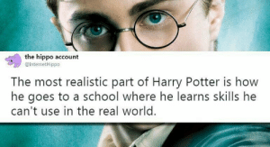 Reality is often disappointing via /r/memes http://bit.ly/2GpcAnV: the hippo account  @InternetHippo  The most realistic part of Harry Potter is how  he goes to a school where he learns skills he  can't use in the real world. Reality is often disappointing via /r/memes http://bit.ly/2GpcAnV