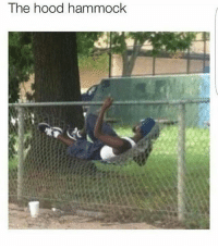 need to cop asap & gn r(;: The hood hammock need to cop asap & gn r(;