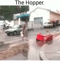 Funny, Lol, and Hopper: The Hopper. Thats fkd up lol