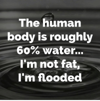 Memes, Fat, and Rough: The human  body is roughly  60% Water...  I'm not fat,  I'm flooded That's my story....😋