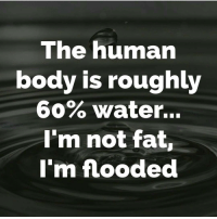 Gym, Human, and Humanism: The human  body is roughly  60% Water...  I'm not fat,  I'm flooded 😂😂😂😂😂