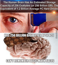 Dammit, brain!: The Human Brain Has An Estimated Storage  Capacity of 256 Exabytes (or 256 Billion GB), The  Equivalent of 1.2 Billion Average PC Hard Drives  HAS 256 BILLION GIGABYTESOFSPACE  CANT REMEMBER BASIC MATH FACTS Dammit, brain!