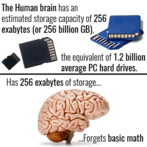 Memes, Brain, and Math: The Human brain has an  estimated storage capacity of 256  exabytes (or 256 billion GB),  the equivalent of 1.2 billion  average PC hard drives.  Has 256 exabytes of storag..  IGANNS  ...Forgets basic math