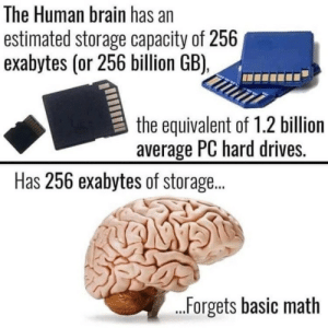 Brain, Math, and Human: The Human brain has an  estimated storage capacity of 256  exabytes (or 256 billion GB),  the equivalent of 1.2 billion  average PC hard drives.  Has 256 exabytes of storage...  .Forgets basic math No title