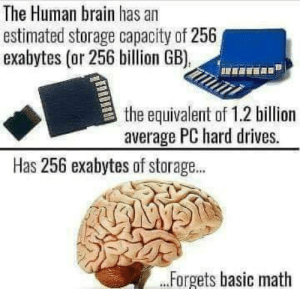 Brain, Math, and Human: The Human brain has an  estimated storage capacity of 256  exabytes (or 256 billion GB),  the equivalent of 1.2 billion  average PC hard drives.  Has 256 exabytes of storage...  Forgets basic math