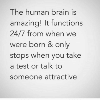 functionality: The human brain is  amazing! It function:s  24/7 from when we  were born & only  stops when you take  a test or talk to  someone attractivee