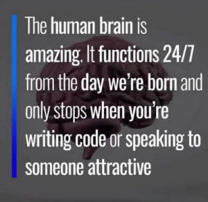 And doing drugs: The human brain is  amazing. It functions 24/7  from the day we're born and  only stops when you're  writing code or speaking to  someone attractive And doing drugs